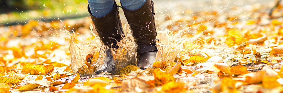 Springende Stiefel in goldenem Herbstlaub (naß)